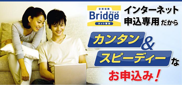 定期保険ブリッジ ネット専用 インターネット申込専用だからカンタン&スピーディーなお申込み!