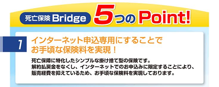 死亡保険Bridge 5つのPoint!1.インターネット申込専用にすることでお手頃な保険料を実現!